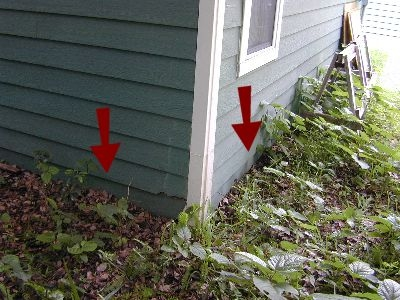 siding-contacting-ground.jpeg